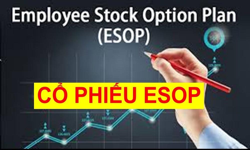 Cổ phiếu ESOP là gì? Lợi ích khi sở hữu cổ phiếu ESOP - Taichinhz