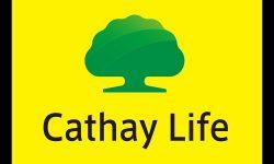 Công ty bảo hiểm Cathay Life lừa có đảo không? 4 cách đóng phí chi tiết
