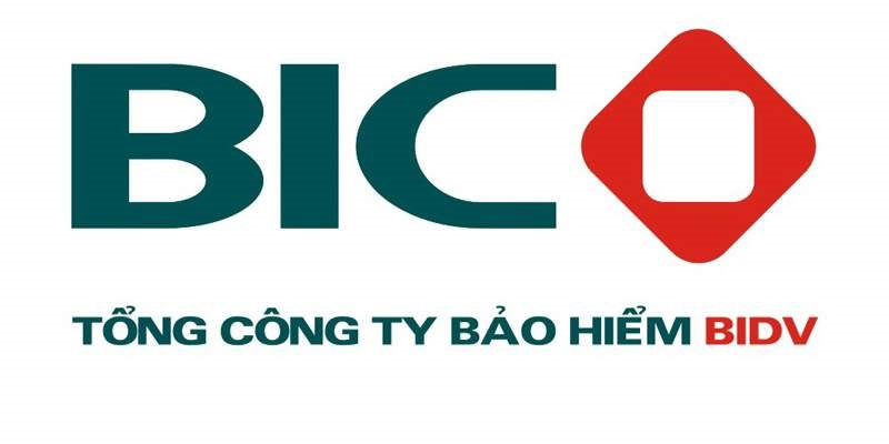 Bảo hiểm thai sản BIC